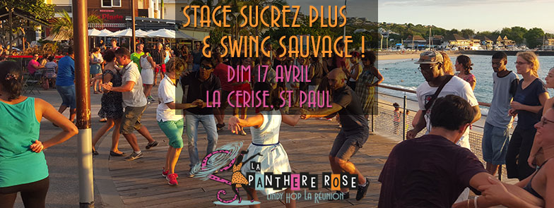 LPR-Stage-LindyHop-Sucrez-Plus-Swing-Sauvage-17-avr16